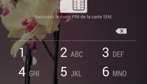 accueil nexus au moment du code SIM